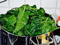 Spinat in den Topf geben