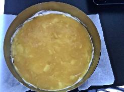 Mango-Fruchtspiegel zubereiten