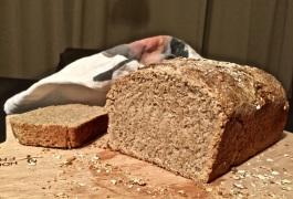 Vollkorn-Honig-Brot
