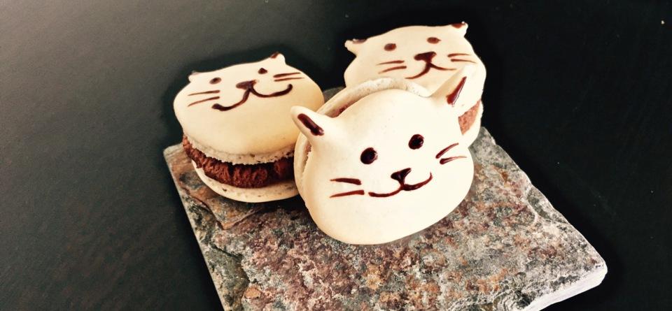Katzen-Macarons